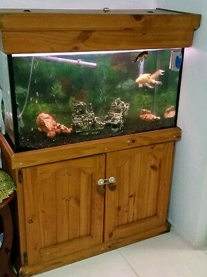 Fish tank + fish and everything