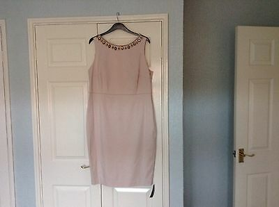 Bnwt Mother Of The Bride Debut At Debenhams Blush Size 18
