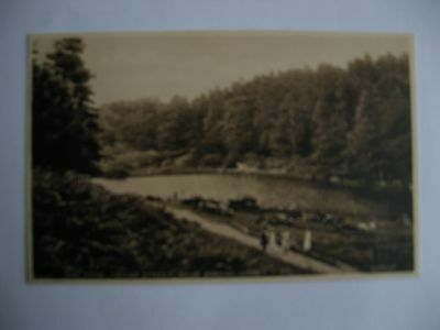 Collectable Postcard of Friday Street  the pond. Near Dorking. Surrey.