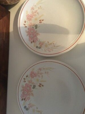 Hedge Rose Assorted Plates And Cups