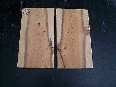 29. Yew - Pair of book-matched knife scales - Crafts / WHY