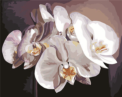 "16X20"" Paint By Number Kit DIY Acrylic Painting on Canvas Flowers 891"