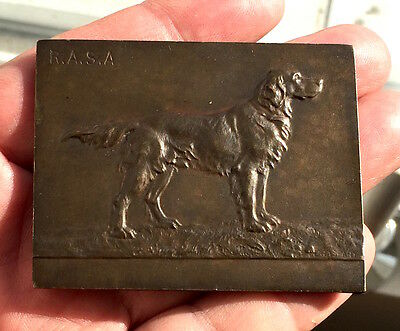 Dog Setter Bronze Medal/plaque - R.a.s.a.