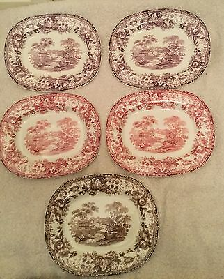 Royal Staffordshire Dinnerware by Claris Cliff