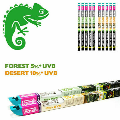 Arcadia Euro Range D3 UVB Reptile Light - 5% (5.0) or 10% (10.0) T8 Tube UV