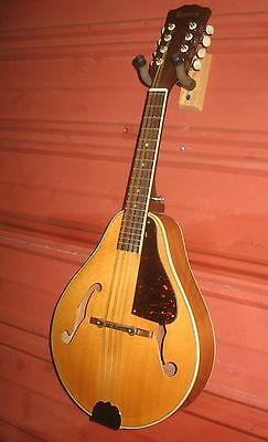 Morris Mandolin. Fine Condition & Ready to Play.