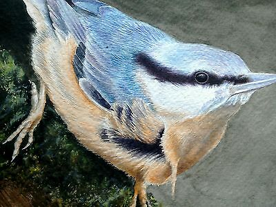 Original signed watercolour painting of a nuthatch bird. This is not a print