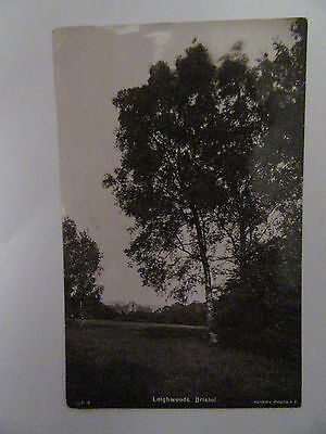 Collectable Vintage RP Postcard - Leighwoods, Bristol - Trees, Countryside 1908