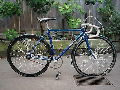 Vintage Italian Fixie / Single Speed Viner 48cm