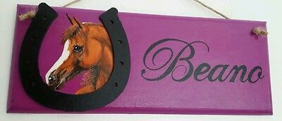 Personalised plaque,hand painted to look like your horse/pony, £10 free post