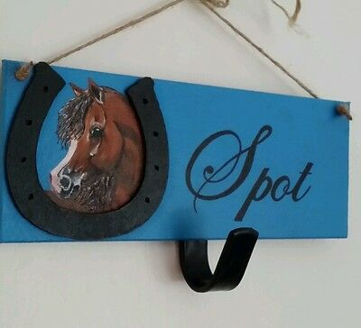 Personalised pony plaque,hand painted with hook any name colours £12free post