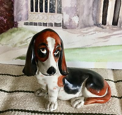 Unusual Basset Hound Model
