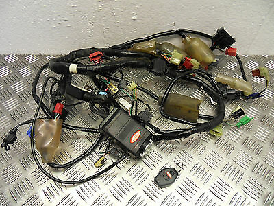 Honda VFR 800 Wiring loom harness & DATATOOL alarm 2002 to 2013