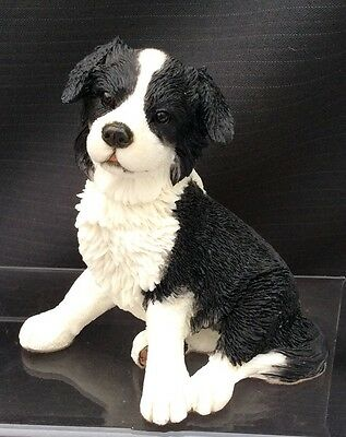 Country Artists Dog - Border Collie Puppy Seated