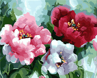 "16X20"" Paint By Number Kit DIY Acrylic Painting on Canvas Flowers 1080"