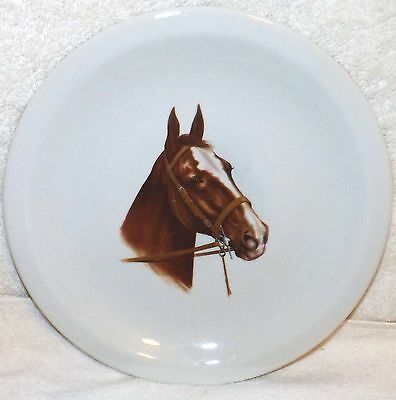 "Vintage Brown Horse Head Collectible Plate 9 3/4"" Diameter Equestrian"