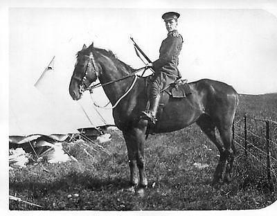 """Photograph 3 CLY Sharpshooters Soldier on Horseback British Army 8.5"""" x 6.5"""""""