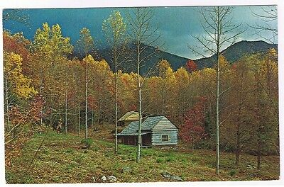 Gatlinburg  Tennessee - Junglebrook On The Cherokee Orchard - Postcard  # Gs-305