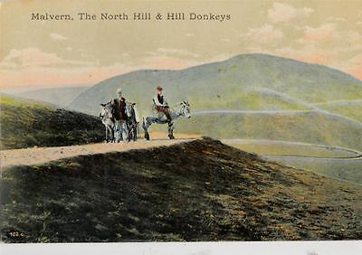 DB16. Vintage Postcard. The North Hill and Hill Donkeys. Malvern.Worcestershire.