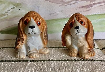 Pair Of Comic Basset Hound Puppies