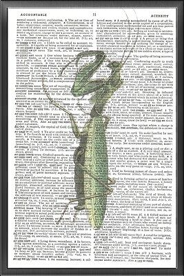 Praying Mantis Altered Art Print Upcycled Vintage Dictionary Page