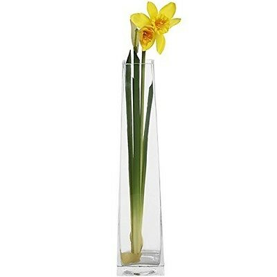 Hill Interiors Daffodil Stem, Yellow/green/orange