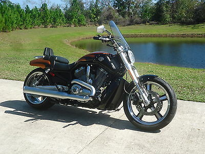 2014 Harley-Davidson VRSC  2014 Harley VRod Muscle only 500 miles and flawless condition!!