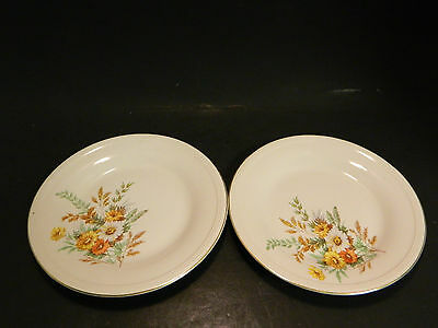 """Vintage Set of (2) Edwin Knowles Daisy Pattern 6.5"""" Plates Excellent Condition"""