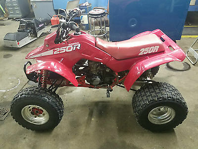 1988 Honda Trx250R 86 87 89 Atv Quad Racer Stock With Title!! Low Reserve!!!!!!!