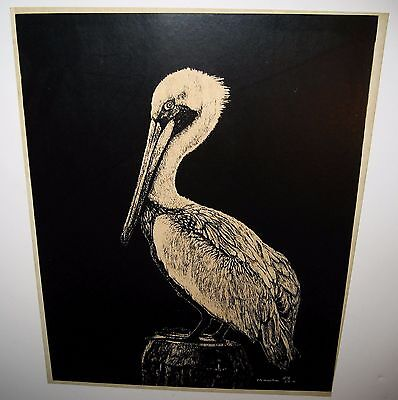 "Vintage Original Pelican Print Signed & Numbered Ltd Edition 11"" x 14"""