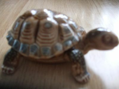 Wade Pottery Tortoise trinket box