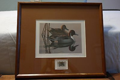 SIGNED 1983 - 1984 FEDERAL DUCK STAMP PRINT w/ SIGNED STAMP by Phil Scholer