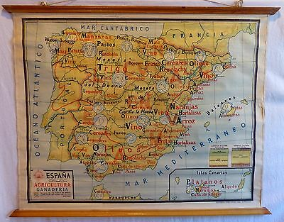 VINTAGE ROLL SCHOOL MAP SPAIN AGRICULTURA GANADERIA ANTIQUE POSTER 123x96Cm 1960