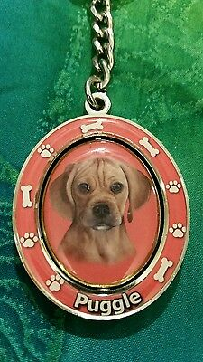 Puggle dog - Collectible Spinning Keychain, E&S Imports - #KC-122, New!