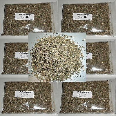 Catnip BULK - USA Grown - Coarse Cut Fresh Dried Green Potent  (1oz-16oz) + GIFT