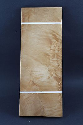 """Quilted maple molted raw wood veneer 14 3/4"""" x 5 1/2"""" x 1/42'' ONE SHEET"""