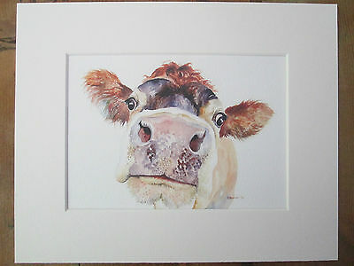 """Watercolour cow ( b), print, of original painting, in 10"""" x 8"""" Mount"""
