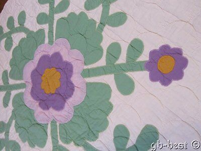 """Gorgeous c 1930s Whig Rose APPLIQUE Quilt pc 25"""" x 26"""" make wall quilt"""