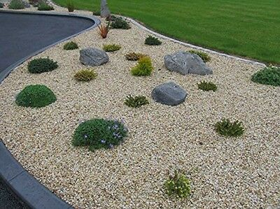 Wee Donegal Gold Decorative Garden Stone Detritus Rubble for Driveway Path 20kg
