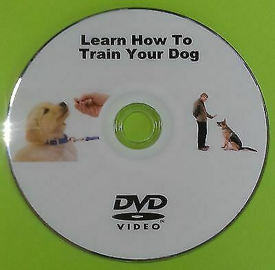 Learn How to Train Your Puppy Dog DVD Training Behaviour