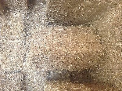 Barley Straw Small Squares (Sheded)