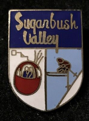 SUGARBUSH VALLEY Vintage 1960s Skiing Ski Pin VERMONT VT Souvenir Travel Resort