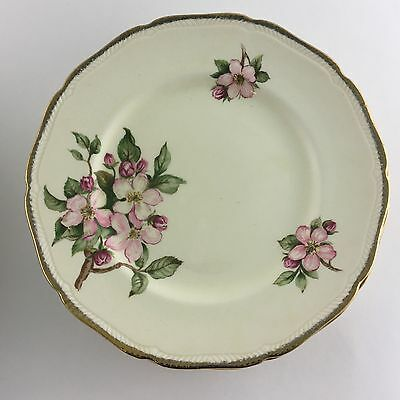 Five Royal Swan Bread & Butter Plates Blossomtime Made In Staffordshire England