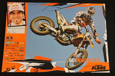Card Red Bull KTM 350 SX-F 2010 #22 Rui Gonçalves (POR) MX1 (HW)