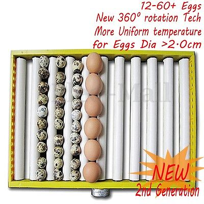 220V 360° Turner Tray Chicken Duck Quail Bird Eggs Automatic Poultry Incubator