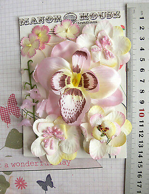 Light PINK & IVORY ORCHID - 8 Flowers 5 Styles PAPER & SILK Flowers 25-85mm HH2
