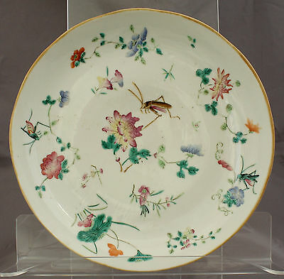 Chinese Qing Tongzhi Mark Famille Rose Porcelain Insect Flower Bowl Dish