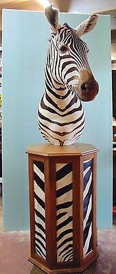ZEBRA Head - Shoulder Mount On Pedestal Taxidermy Man Cave Cabin Hunting Lodge