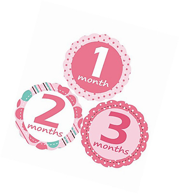 'MuchMore' Baby Monthly Stickers for Girl, Bodysuit Stickers .These Infant month