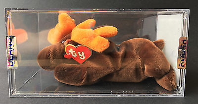 Ty Beanie Baby Chocolate Moose 1st / 1st Generation Tags Korean Authenticated